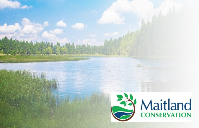 Maitland Conservation logo overtop of an photo of Lake Lilly in Maitland